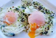 Oua poșate cu germeni și semințe de cânepă aroma zen